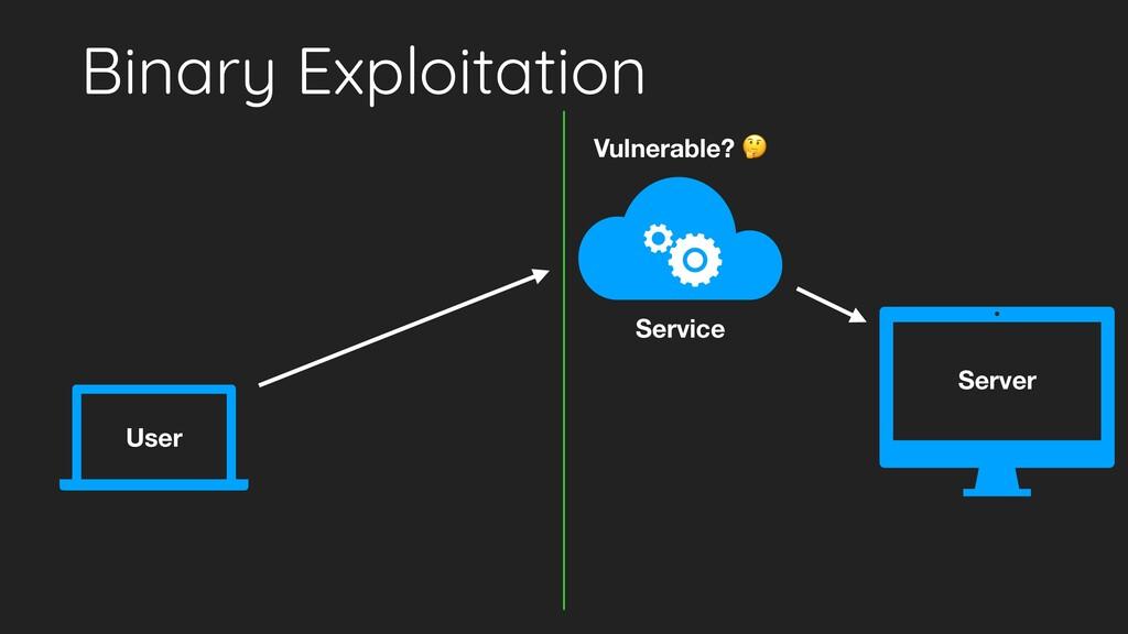 Binary Exploitation User Server Service Vulnera...