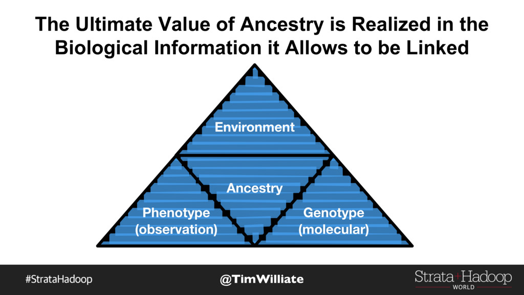 The Ultimate Value of Ancestry is Realized in t...