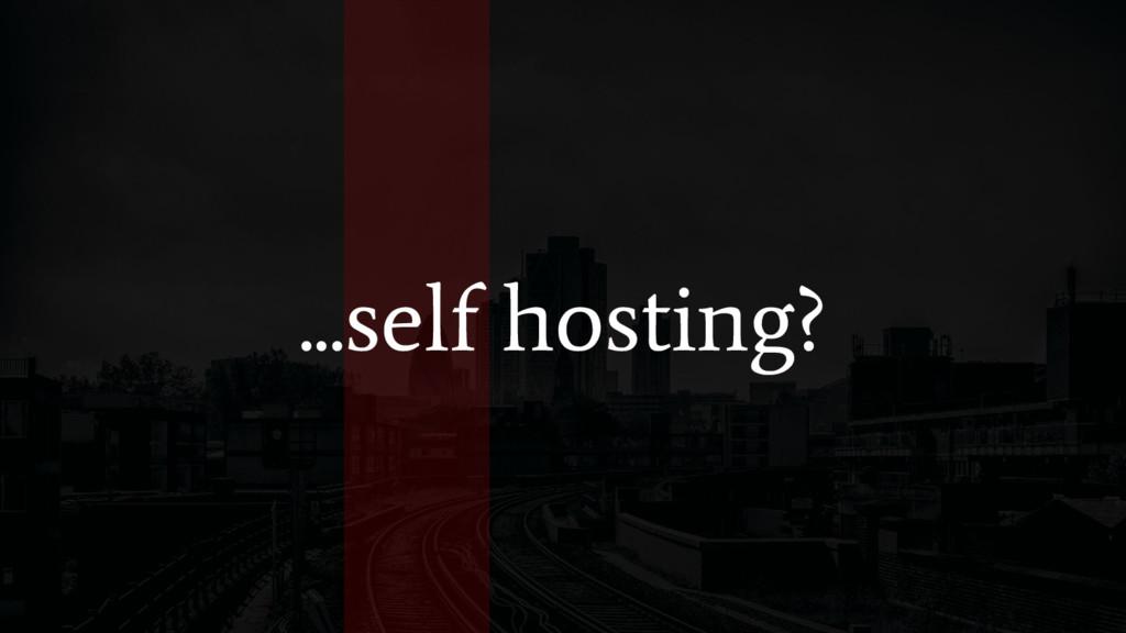 ...self hosting?