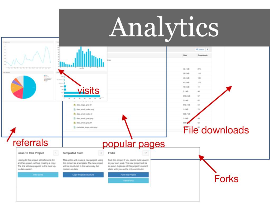 File downloads Forks Analytics visits popular p...