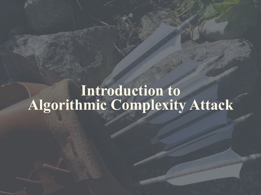 Introduction to Algorithmic Complexity Attack