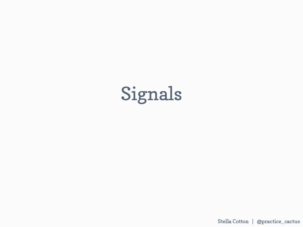 Stella Cotton | @practice_cactus   Signals