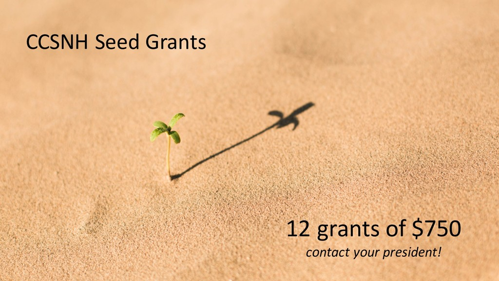 12 grants of $750 contact your president! CCSNH...