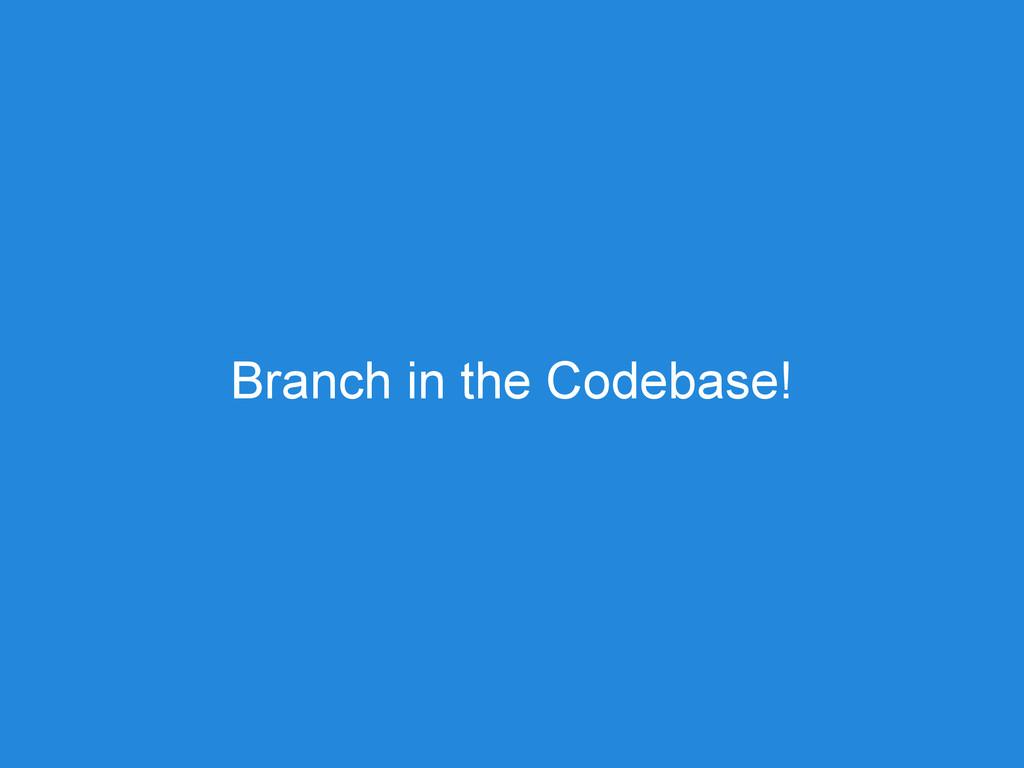 Branch in the Codebase!