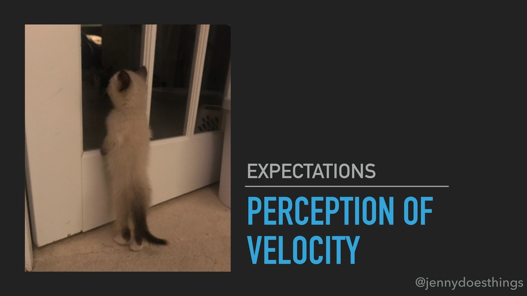 PERCEPTION OF VELOCITY EXPECTATIONS @jennydoest...