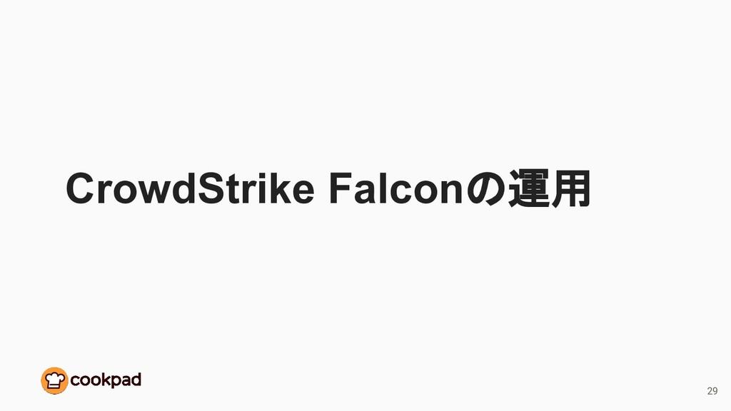 CrowdStrike Falconの運用 29