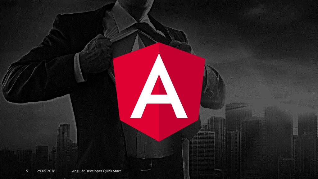 29.05.2018 Angular Developer Quick Start 5