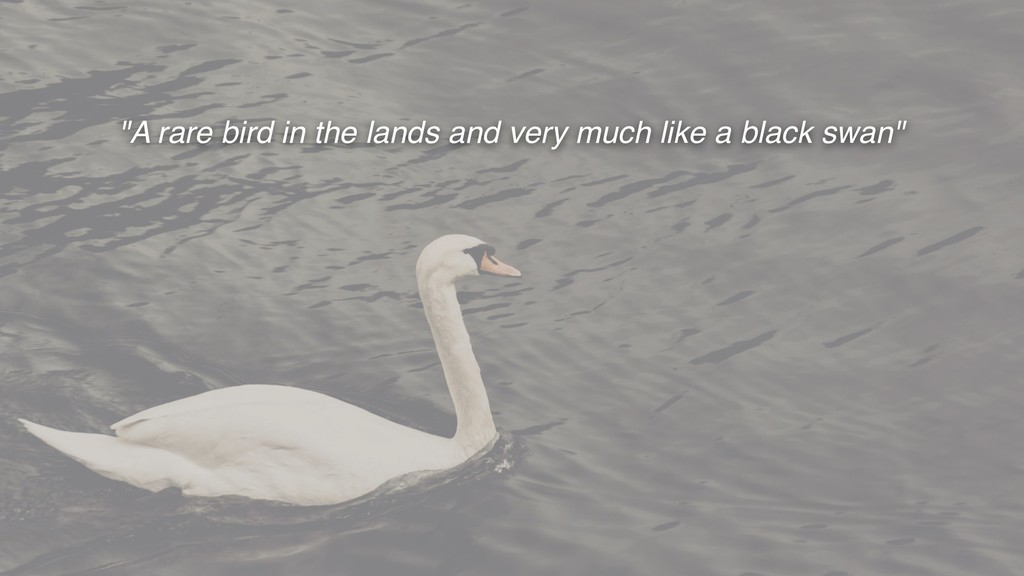 """""""A rare bird in the lands and very much like a ..."""