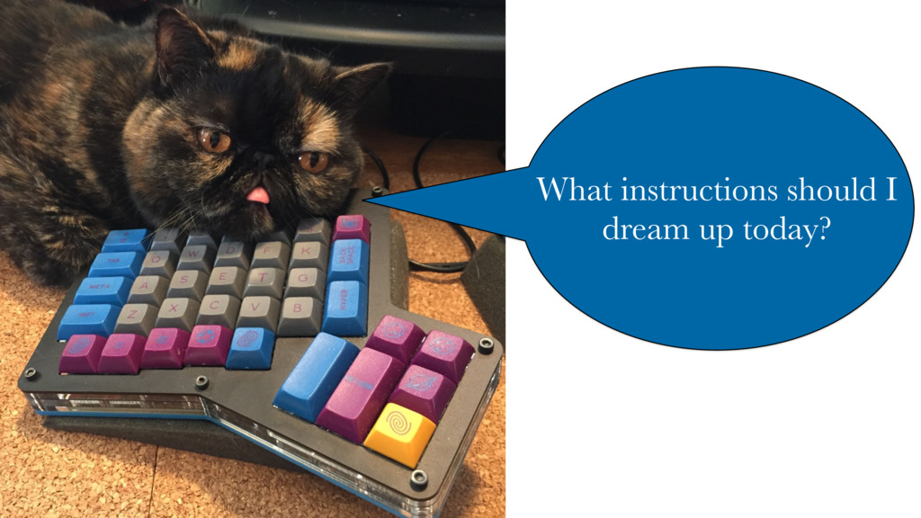 What instructions should I dream up today?