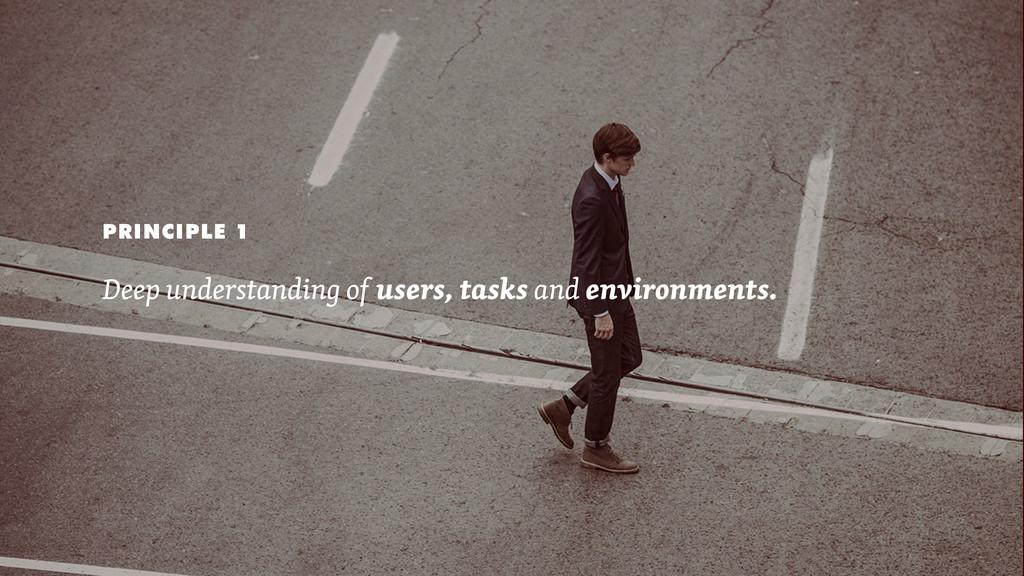 PRINCIPLE 1 Deep understanding of users, tasks ...