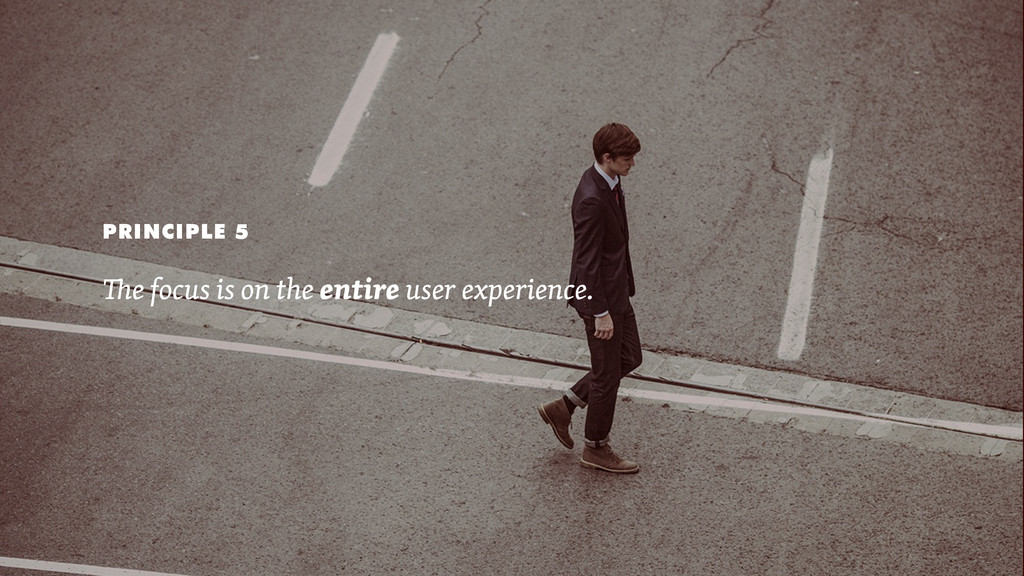 PRINCIPLE 5 e focus is on the entire user exper...