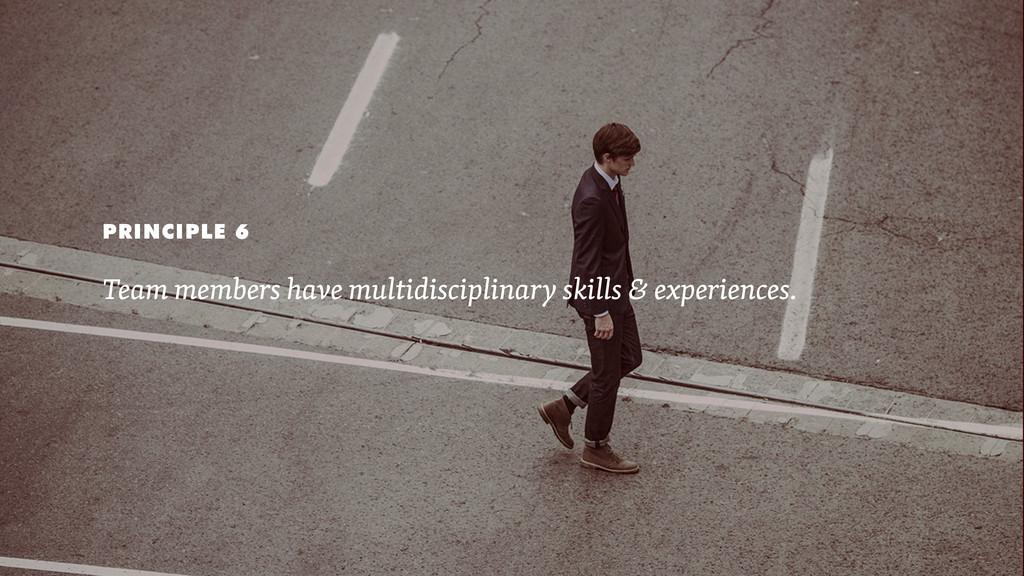 PRINCIPLE 6 Team members have multidisciplinary...