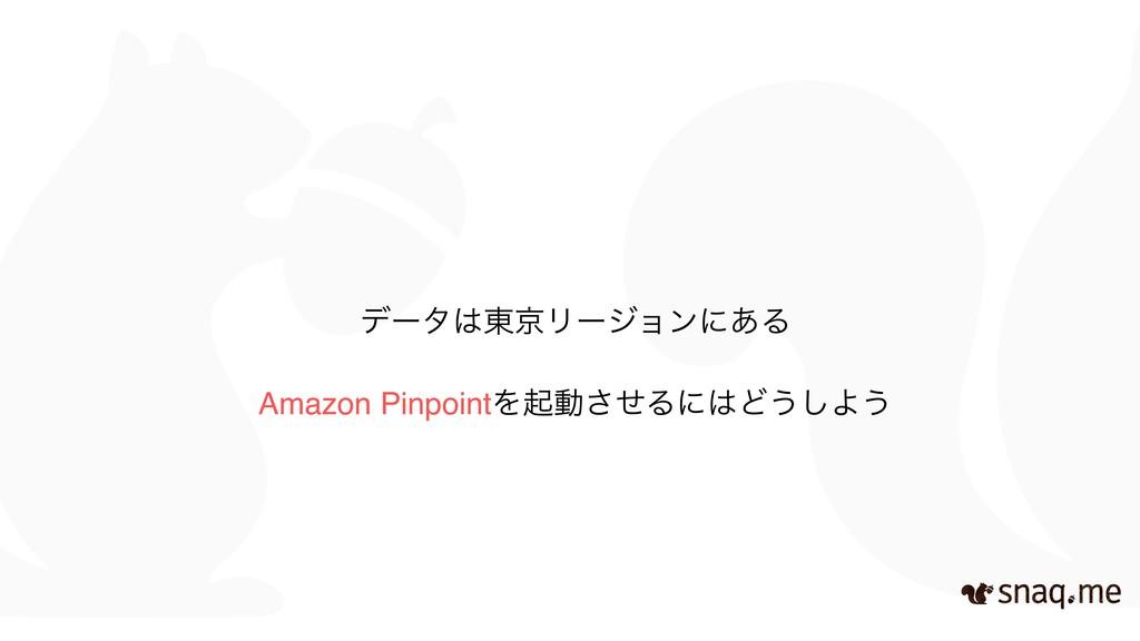 Amazon PinpointΛىಈͤ͞ΔʹͲ͏͠Α͏ σʔλ౦ژϦʔδϣϯʹ͋Δ