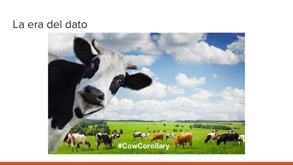 La era del dato #CowCorollary