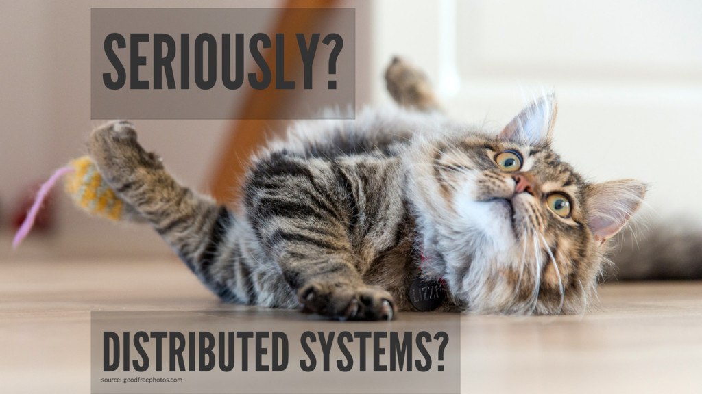 SERIOUSLY? DISTRIBUTED SYSTEMS? source: goodfre...