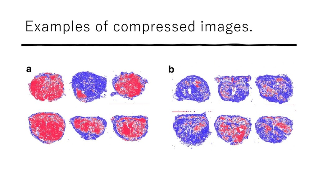 Examples of compressed images.