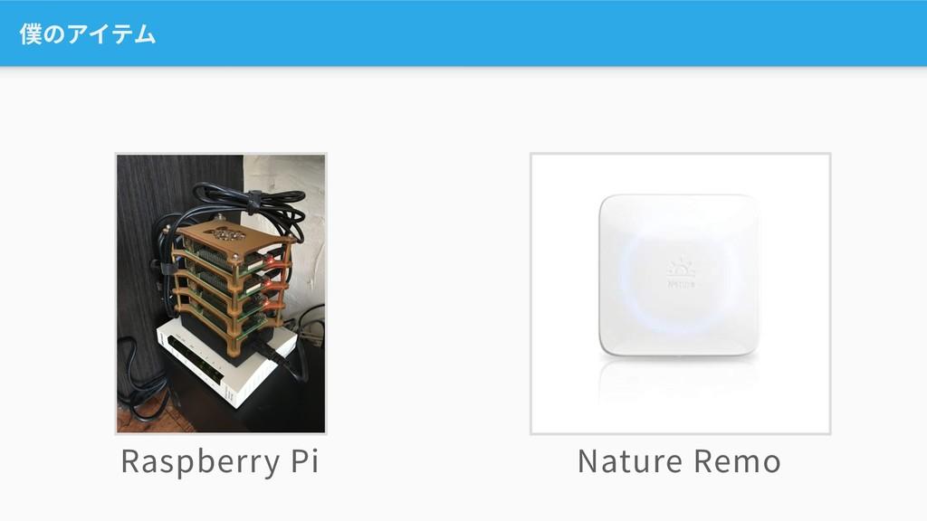 僕のアイテム Raspberry Pi Nature Remo