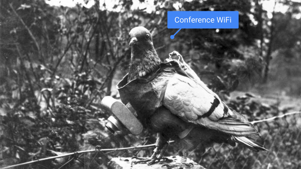 Conference WiFi