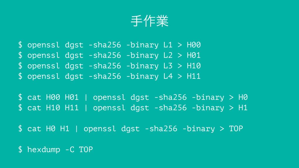 ख࡞ۀ $ openssl dgst -sha256 -binary L1 > H00 $ o...