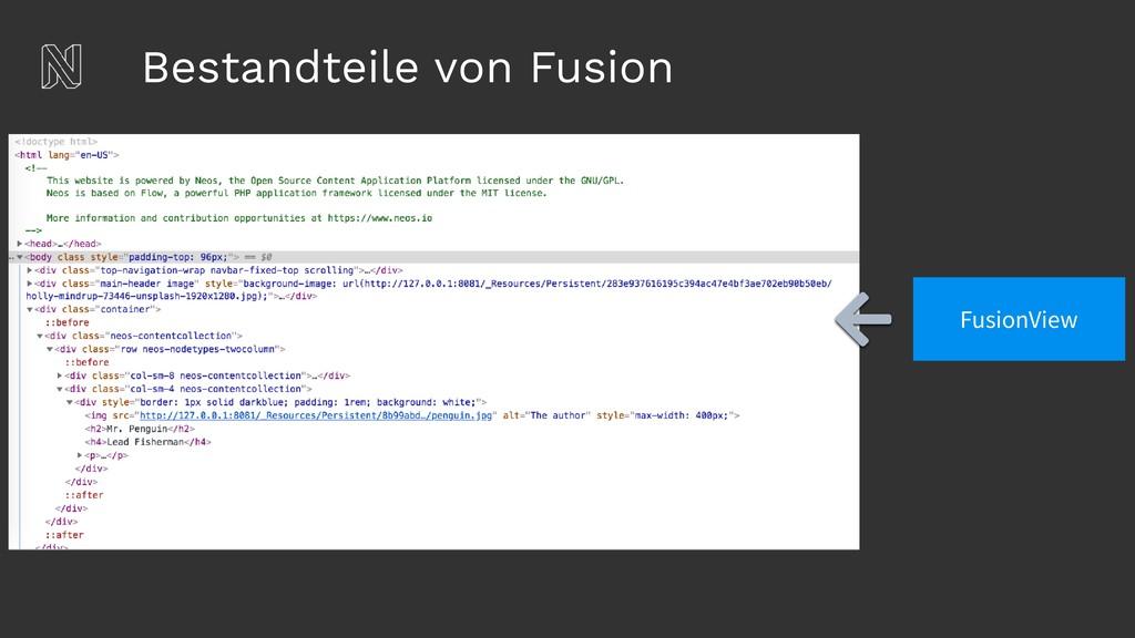 Bestandteile von Fusion FusionView