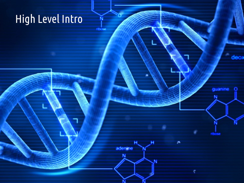 11 Traditional DNA Research High Level Intro