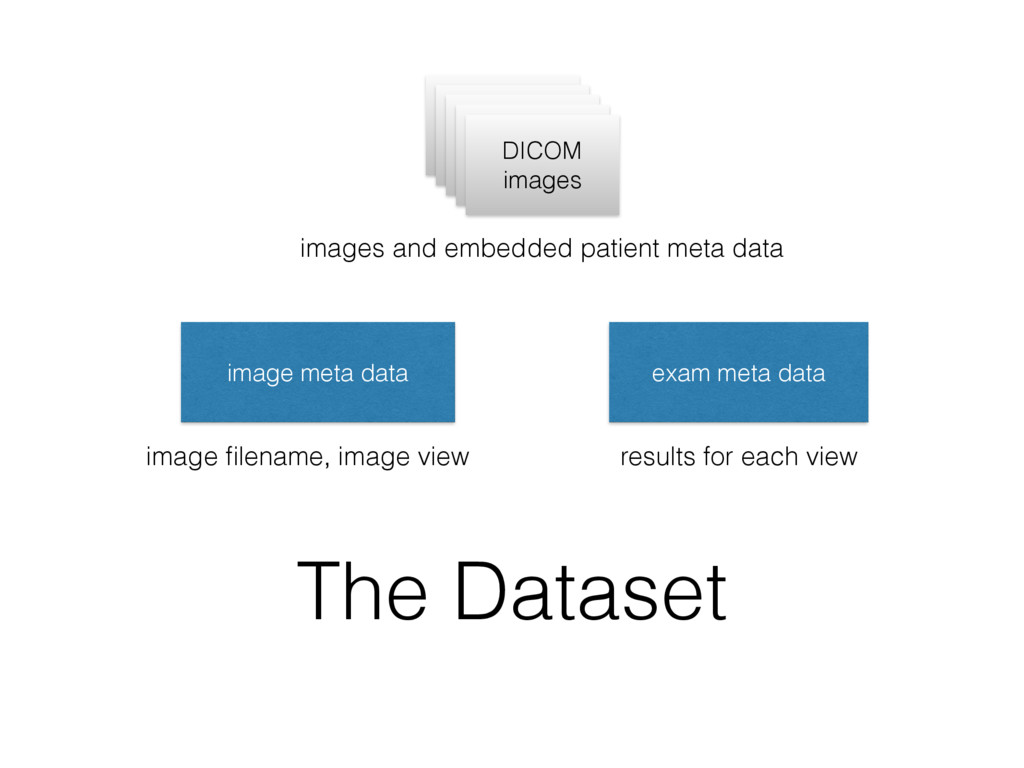 The Dataset image meta data exam meta data DICO...