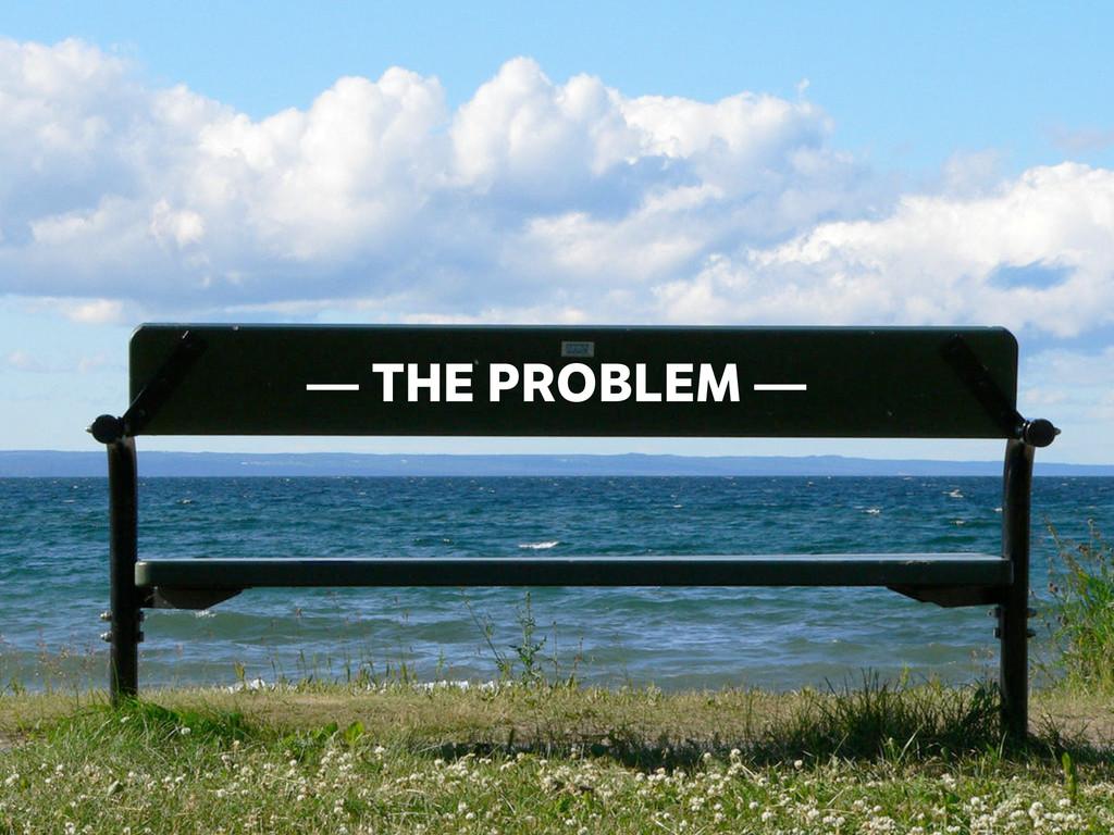 — THE PROBLEM —