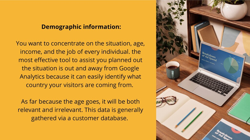 Demographic information:   You want to concentr...