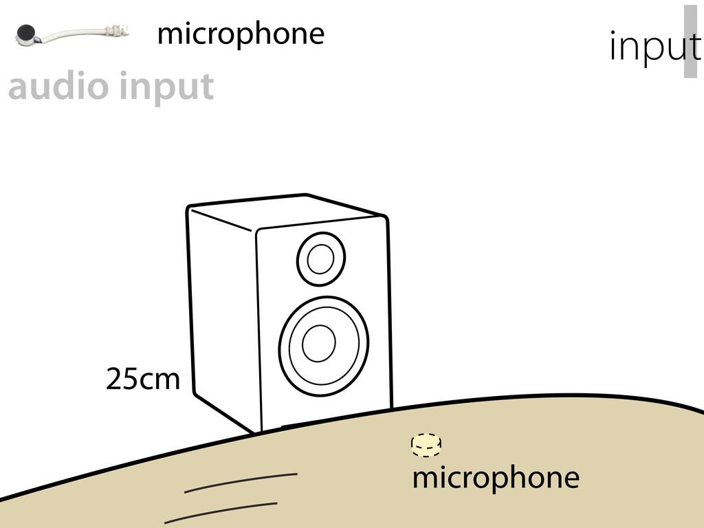 25cm I input audio input microphone microphone