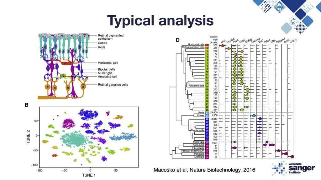 Typical analysis Macosko et al, Nature Biotechn...