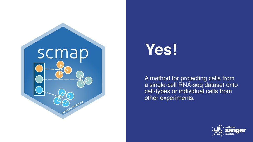 Yes! A method for projecting cells from a singl...