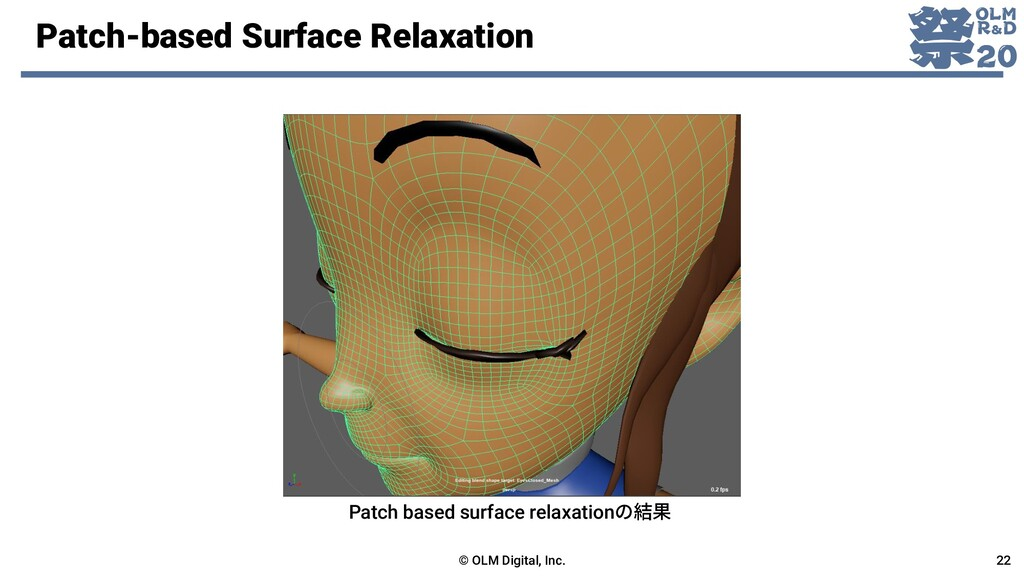 Patch-based Surface Relaxation © OLM Digital, I...