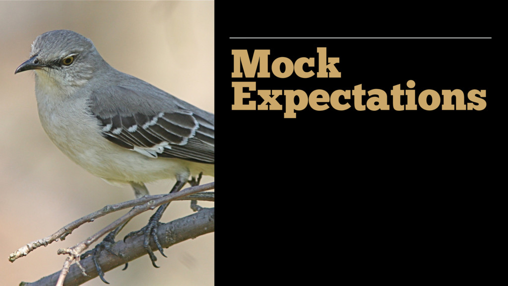 Mock Expectations
