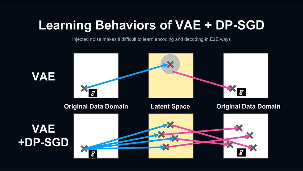 Learning Behaviors of VAE + DP-SGD Injected noi...