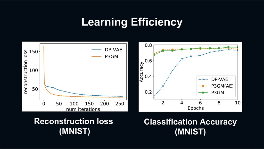 Learning Efficiency MNIST). (b) Reconstruction ...