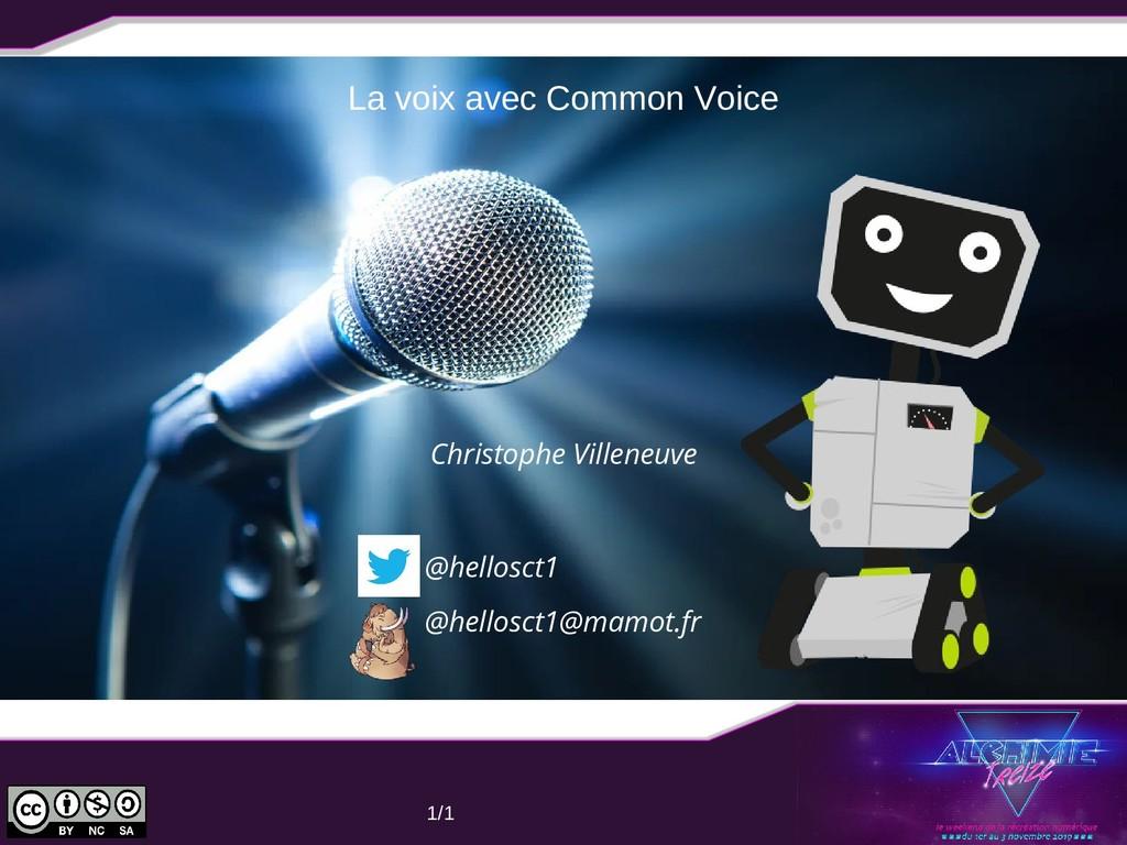 06/11/19 1/1 La voix avec Common Voice @hellosc...