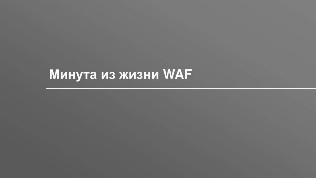 Заголовок Минута из жизни WAF