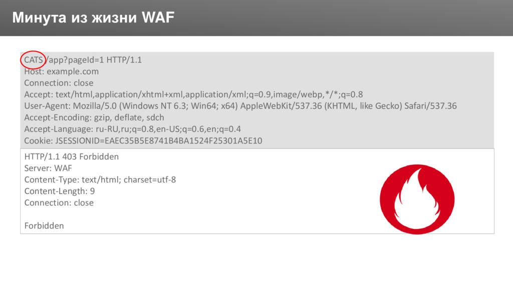 Заголовок Минута из жизни WAF CATS /app?pageId=...