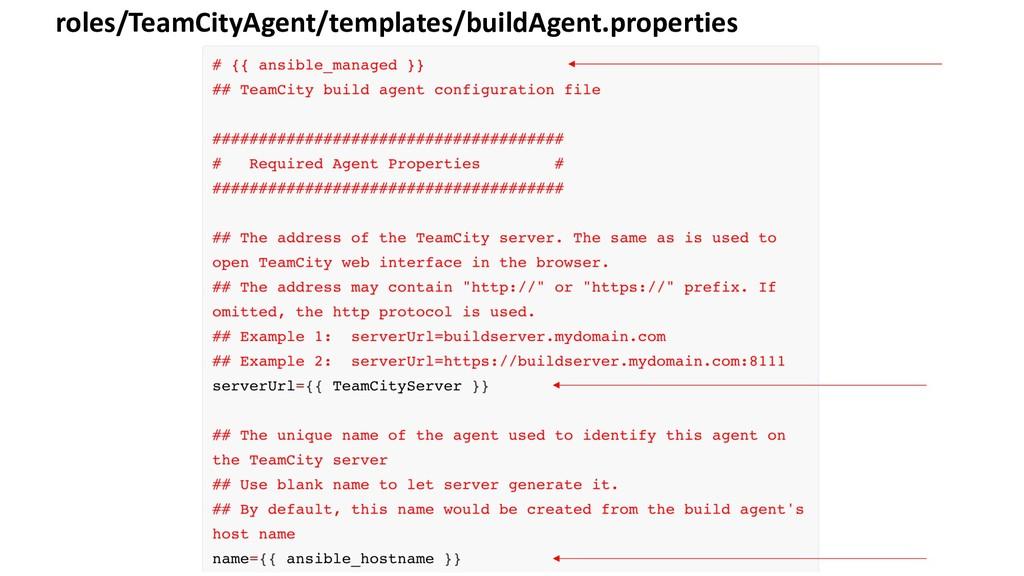 roles/TeamCityAgent/templates/buildAgent.proper...