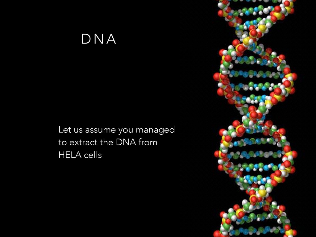 Let us assume you managed to extract the DNA fr...