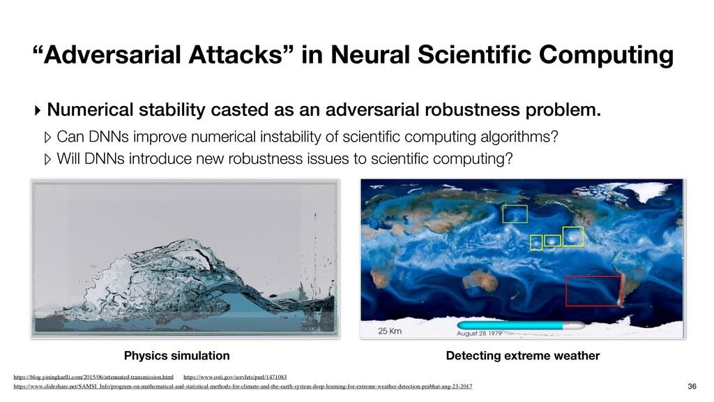 """Adversarial Attacks"" in Neural Scientific Compu..."