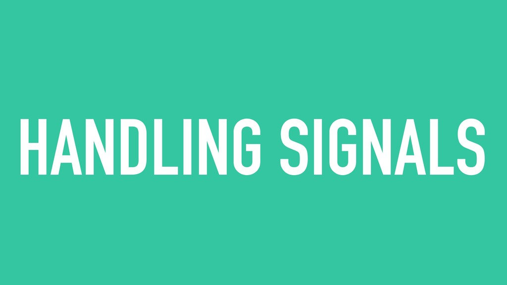 HANDLING SIGNALS