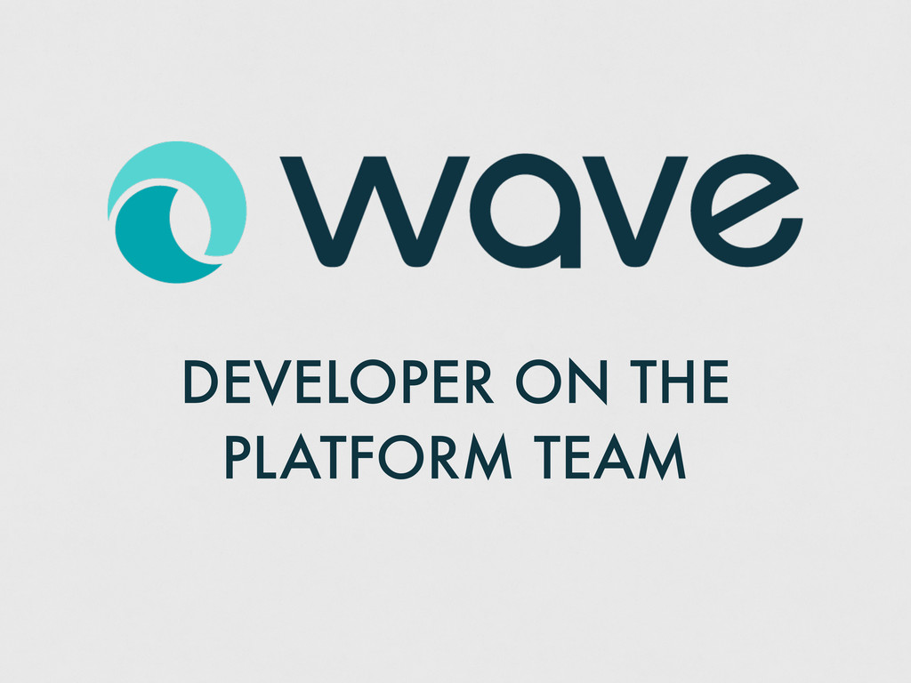 DEVELOPER ON THE PLATFORM TEAM