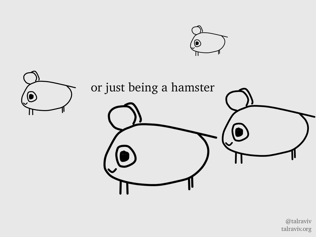 @talraviv talraviv.org or just being a hamster