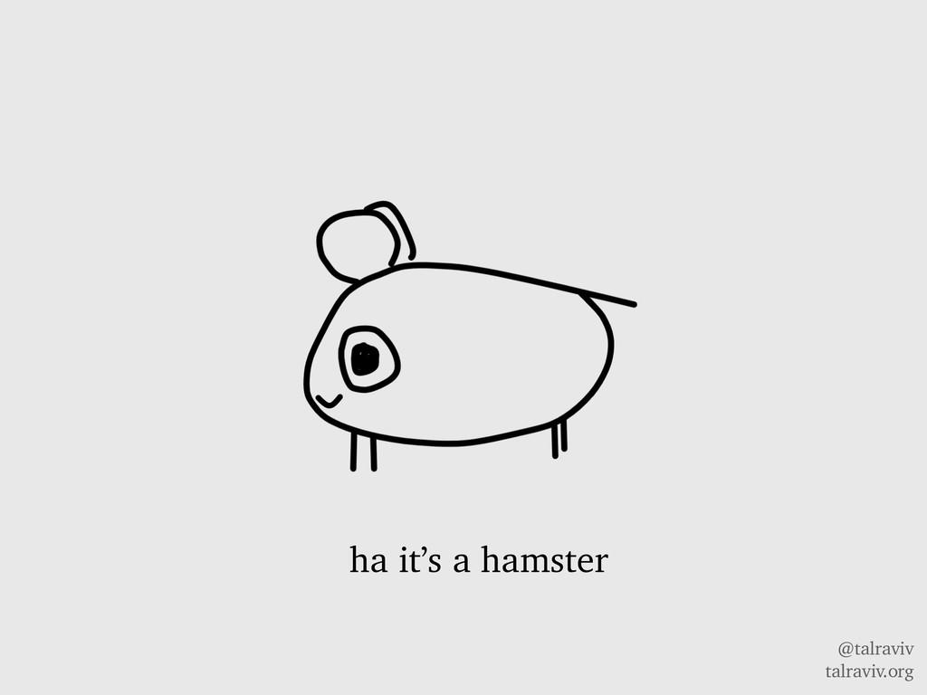 @talraviv talraviv.org ha it's a hamster