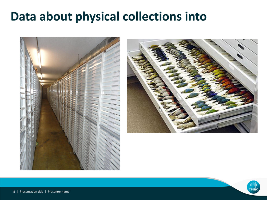 Data about physical collections into Presentati...
