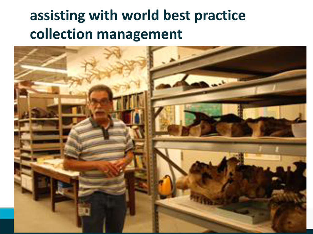 assisting with world best practice collection m...