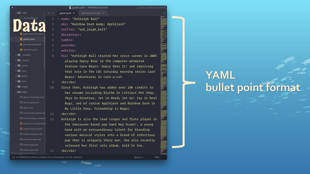 YAML bullet1point1format Data