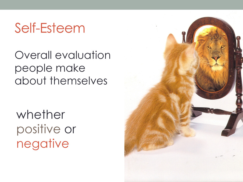 Self-Esteem Overall evaluation people make abou...