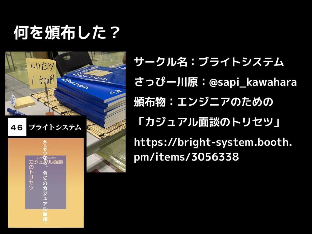 何を頒布した? サークル名:ブライトシステム さっぴー川原:@sapi_kawahara 頒布...